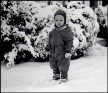 Bio-snow-350w